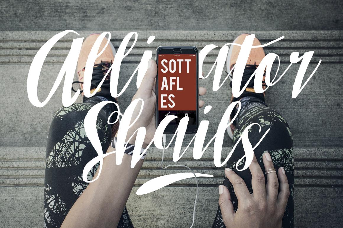 Sottafles Typeface + Swashes example image 4