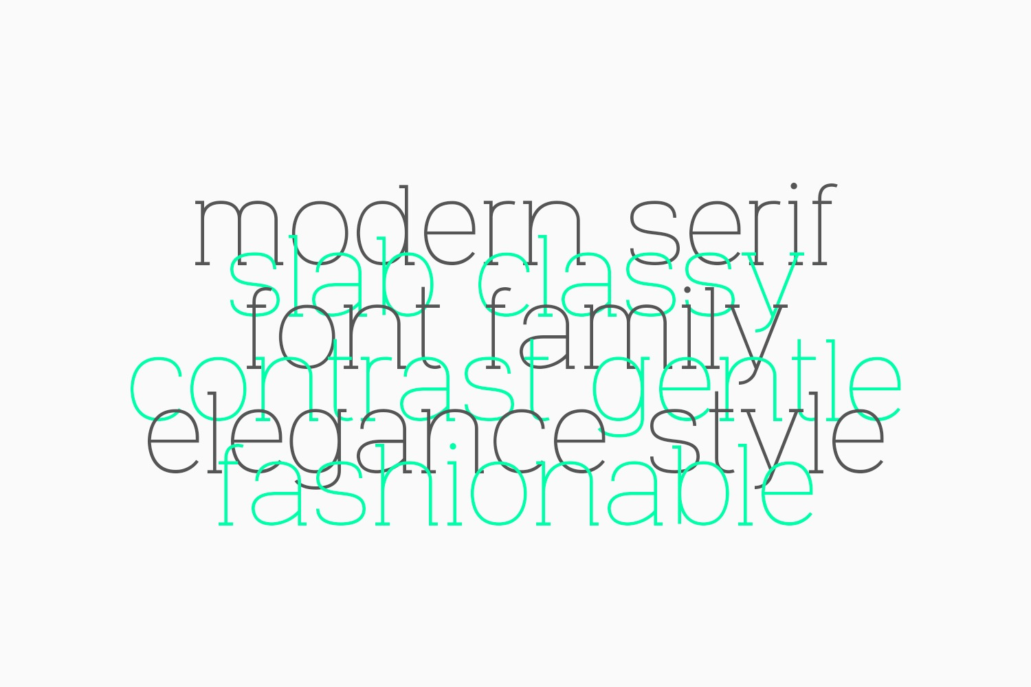 VeniceSerif example image 27