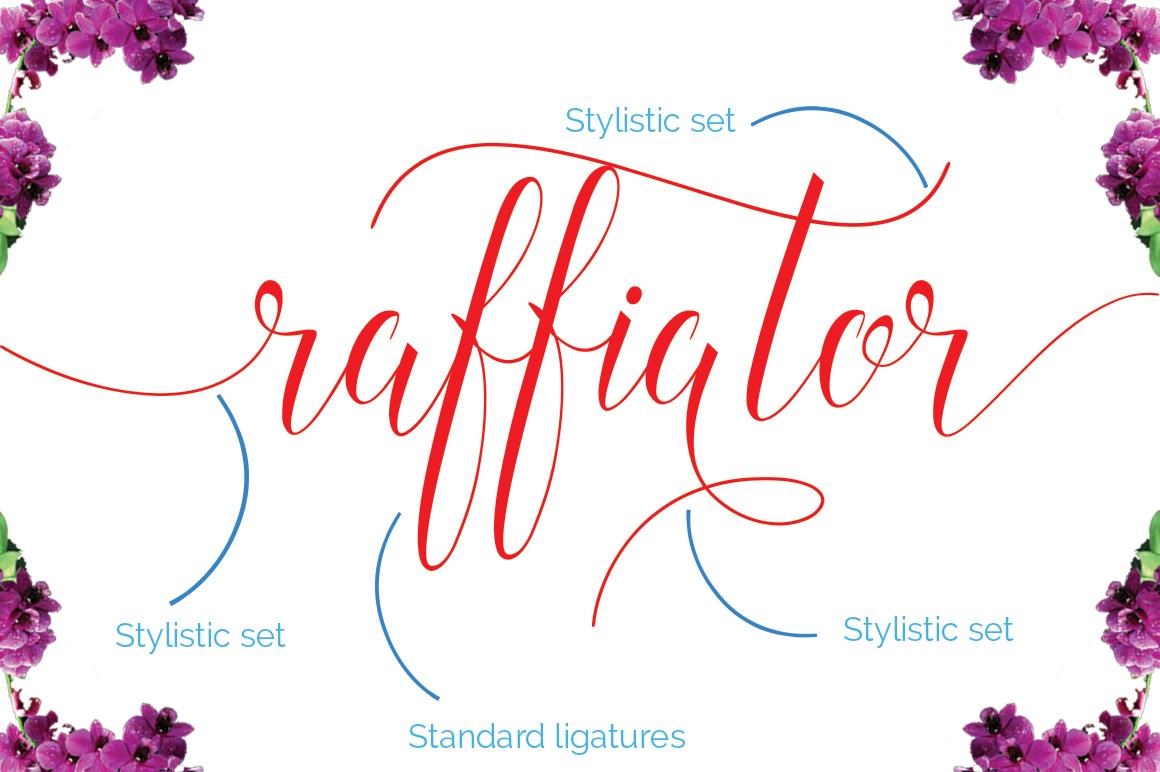 Raffiator Script example image 10