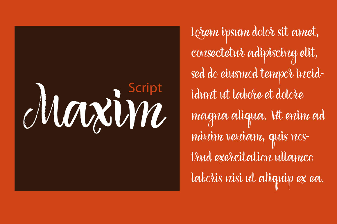 Maxim Script example image 1