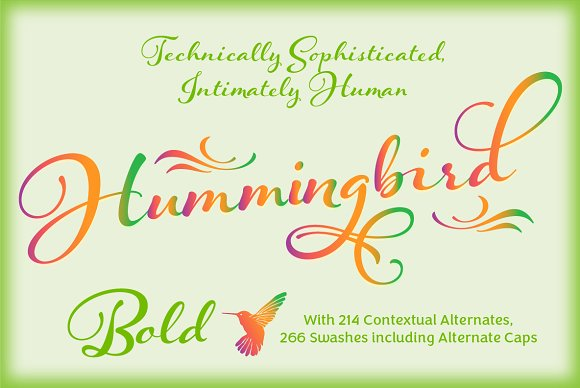 Hummingbird Regular example image 31