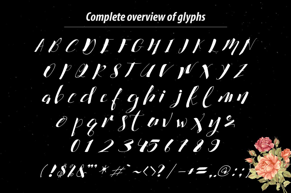 Cataleya Typeface (Full) example image 5