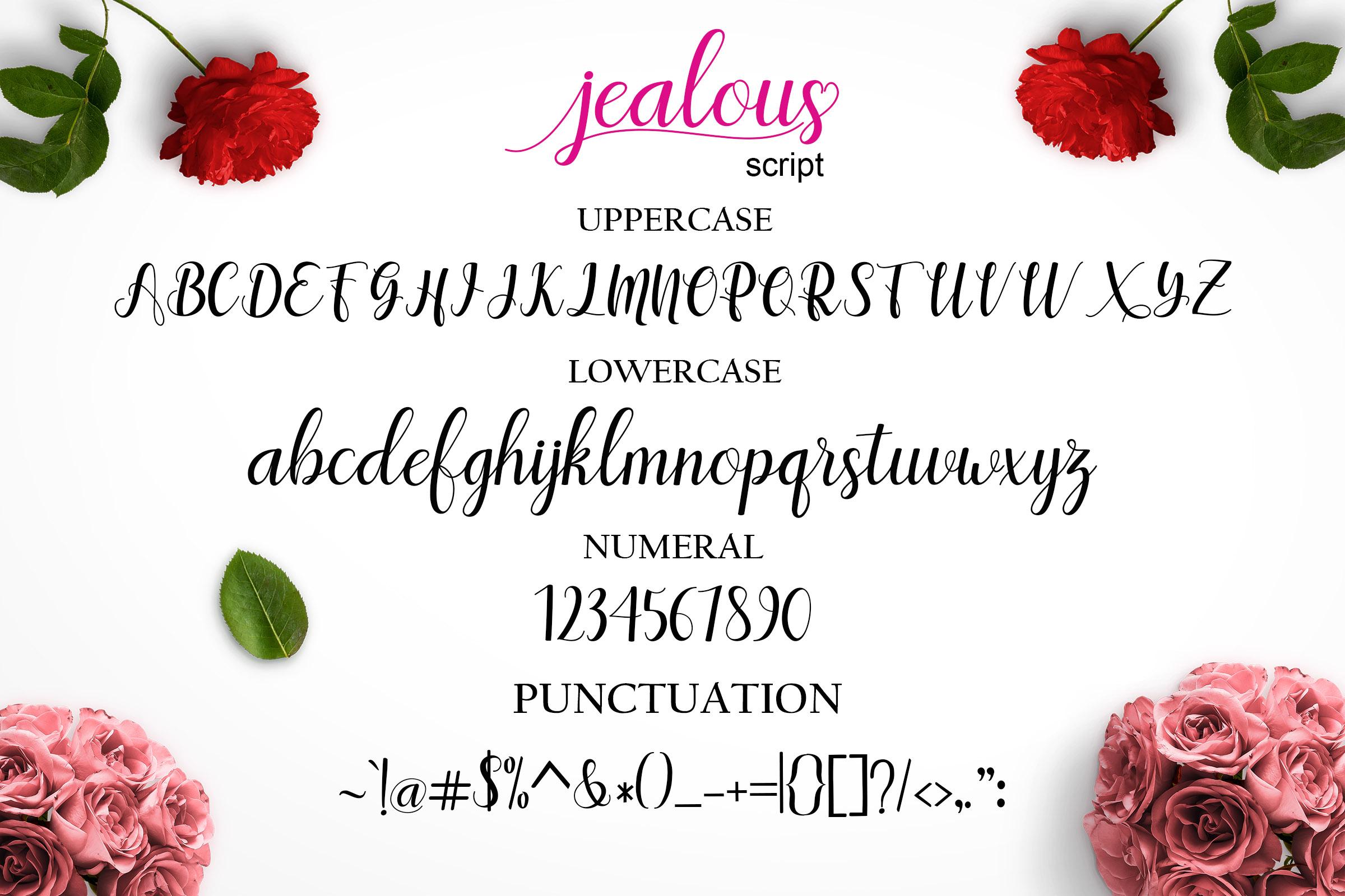 Jealous Script  example image 9