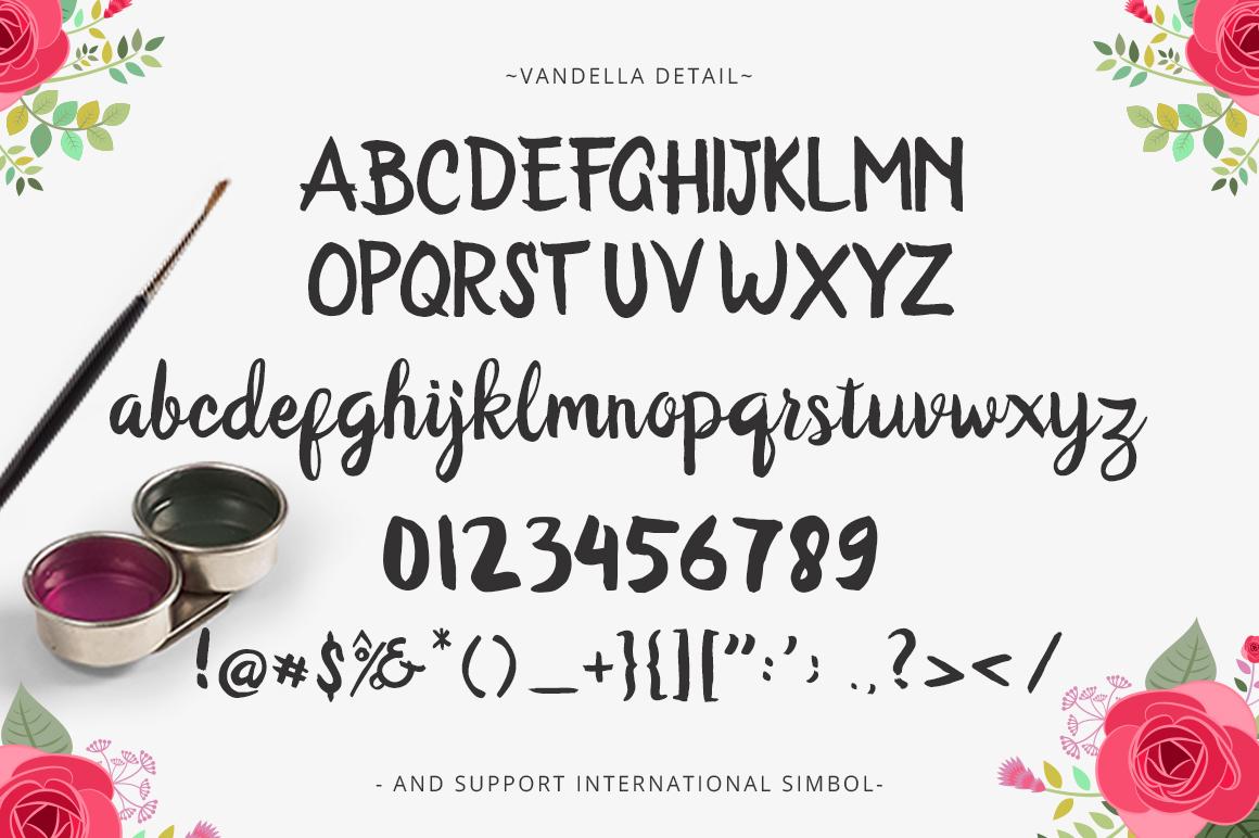 Vandella Script example image 5