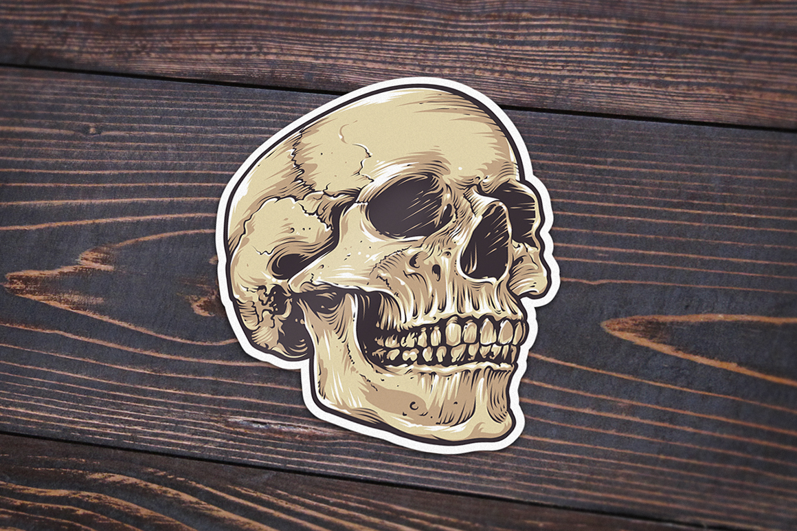Anatomic Skulls | Vector Pack example image 9
