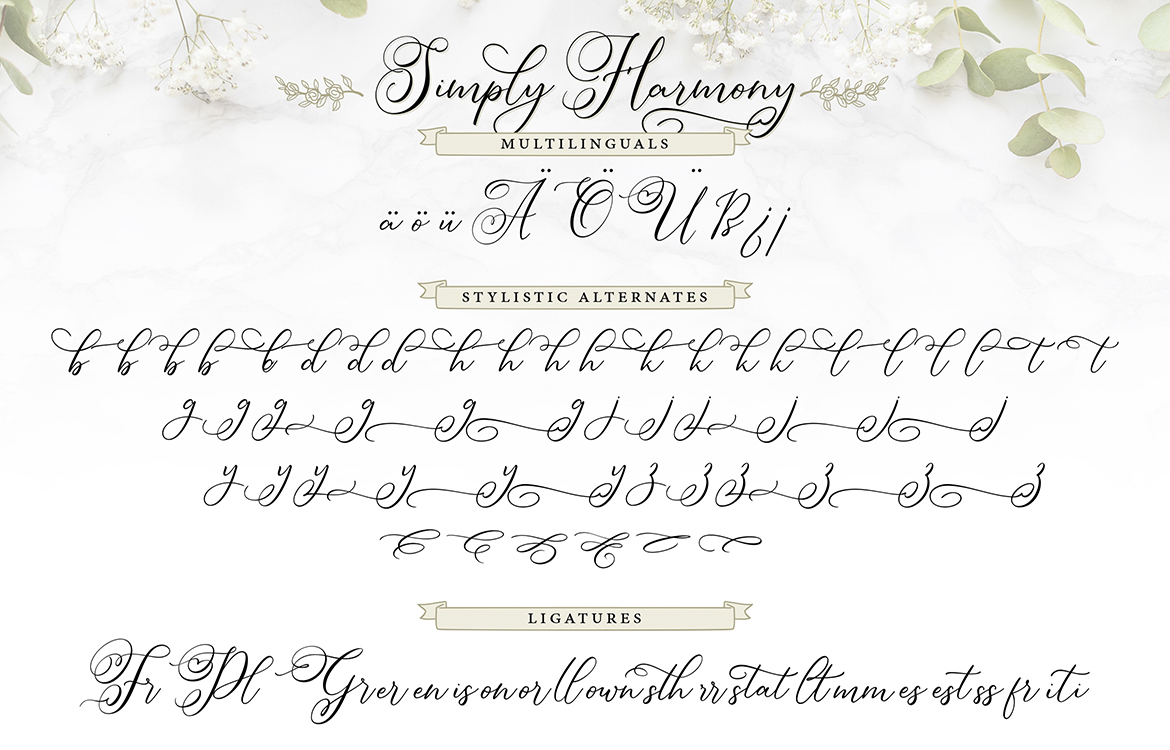Simply Harmony | ASimply Stylistic Modern Calligraphy Script example image 8