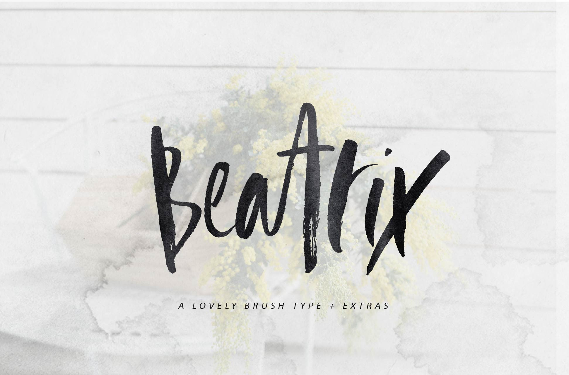 Beatrix Brush Font + Extras example image 1