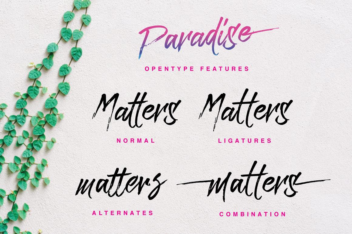 Paradise Typeface example image 4