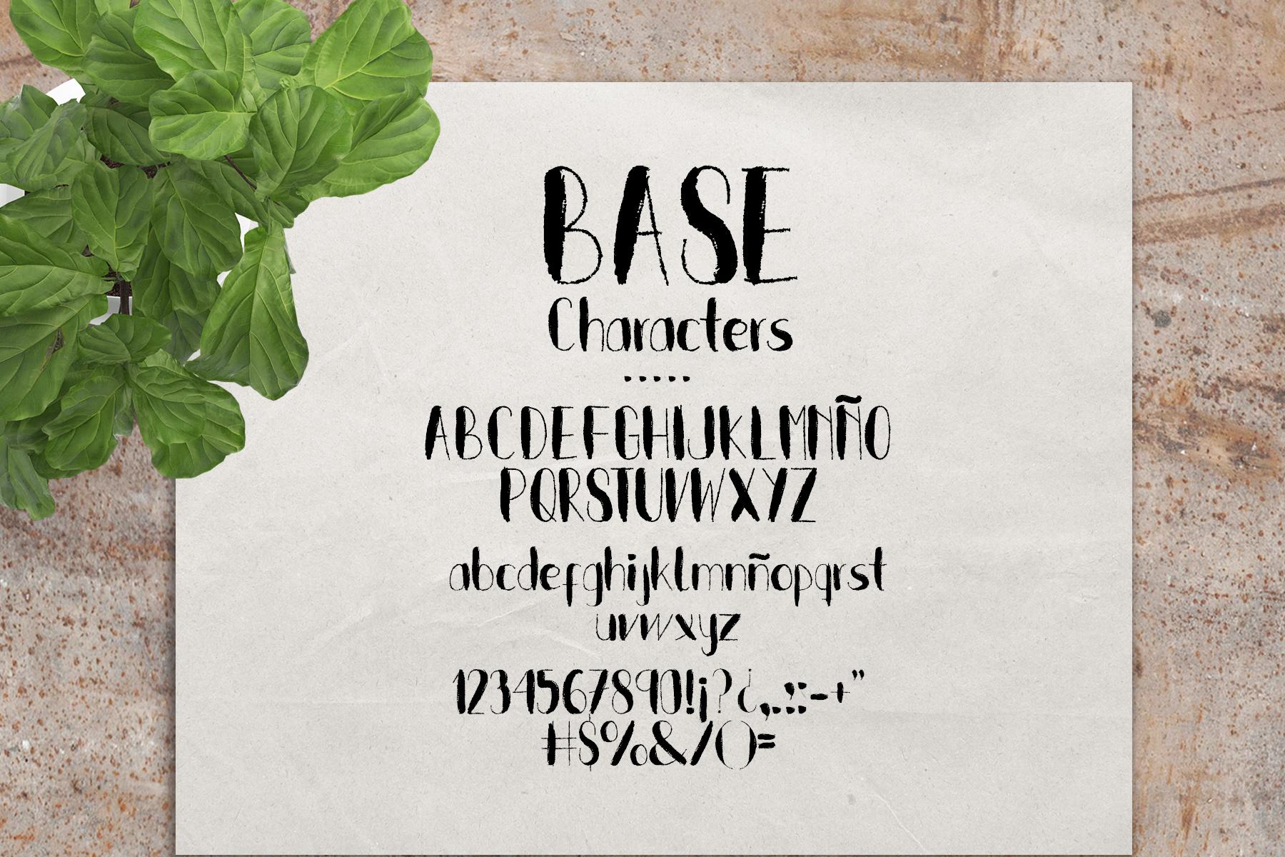 Sweet Kiwy: font trio example image 2