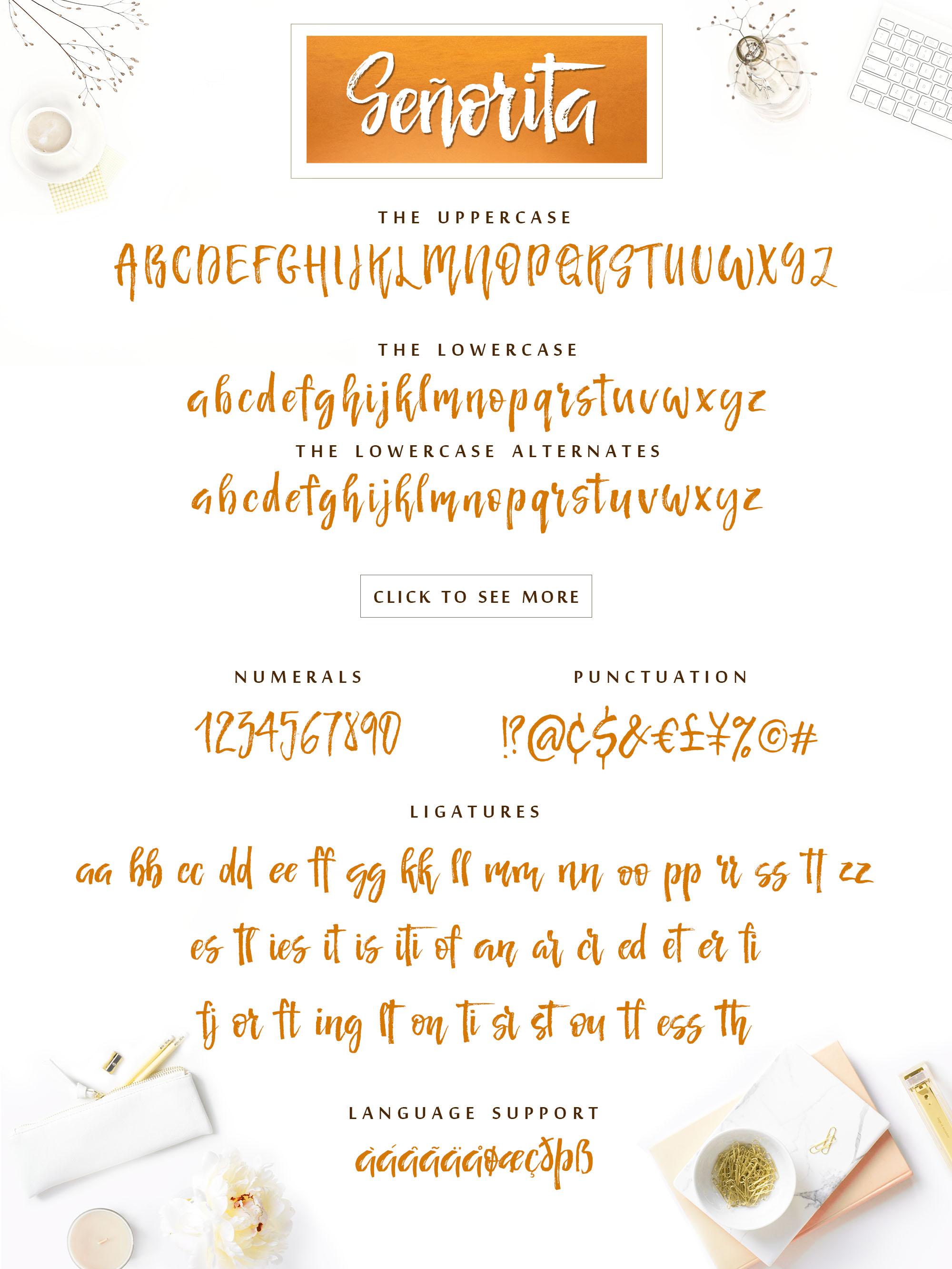 Señorita Handwritten Textured Font example image 9