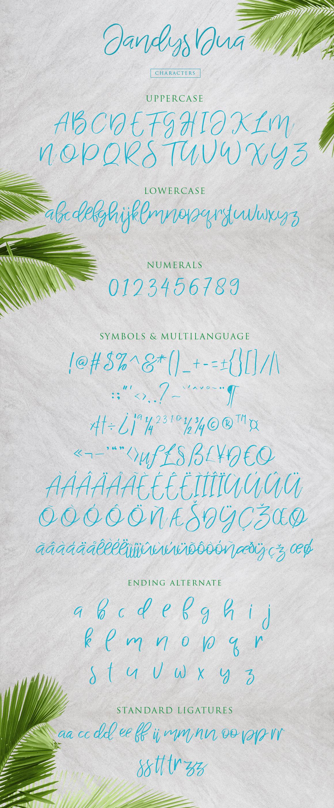 Jandys Typeface example image 11