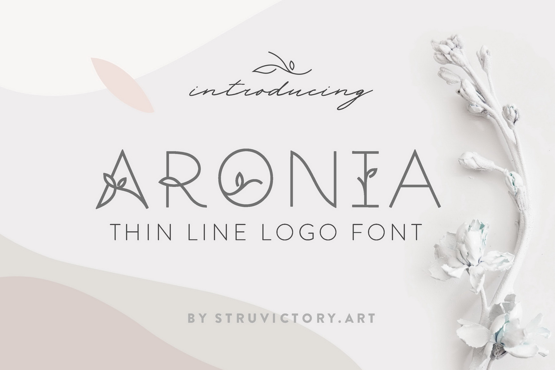 Thin Line Font Bundle 6 in 1 example image 22
