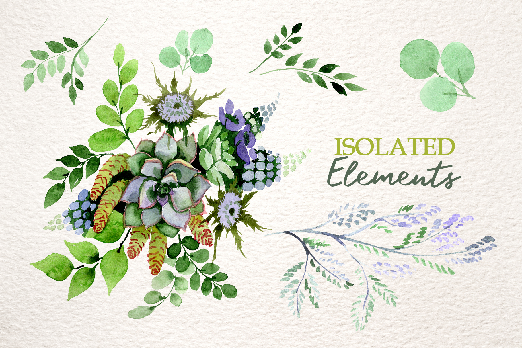 Bouquet with succulents Watercolor png example image 7