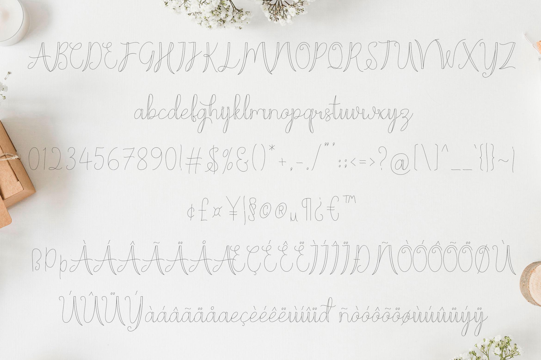 Moon Line Script - Line Script Font example image 6