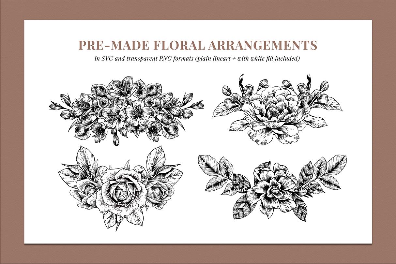 Botanical Illustration Bundle example image 7