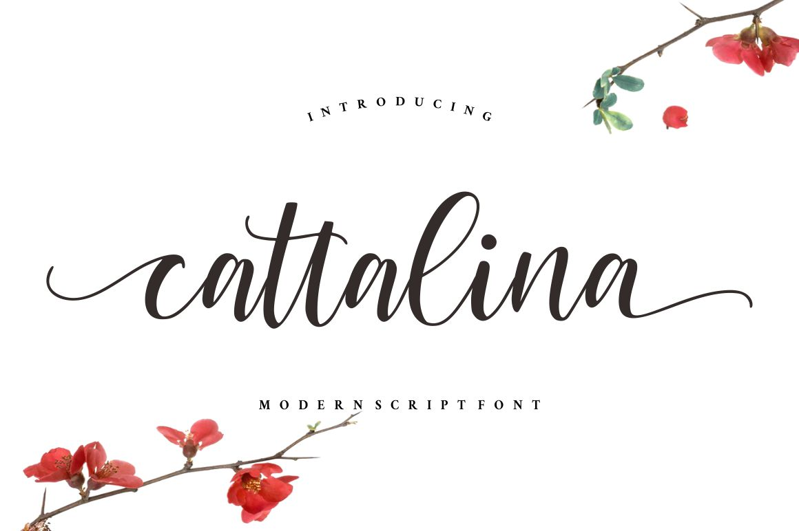 Cattalina - Beauty Script Font example image 1