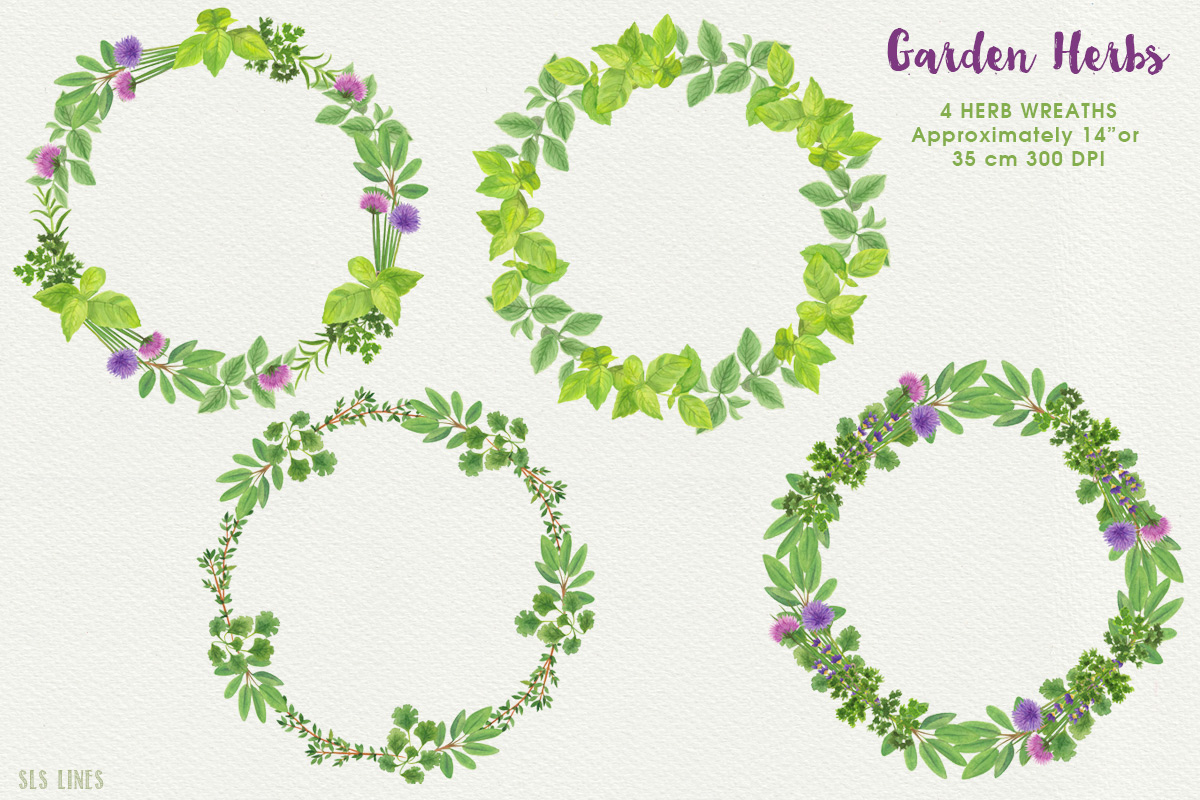 Garden Herbs Watercolor Clipart, PNG example image 3