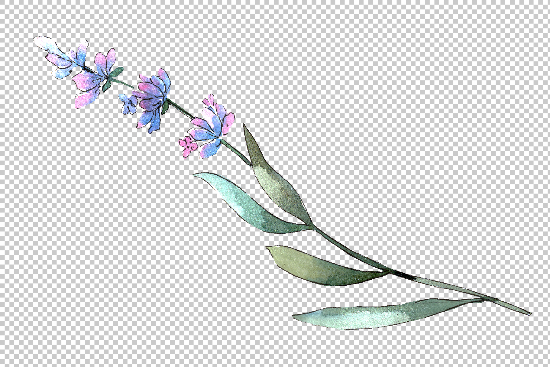 Bouquet of idyll lavender Watercolor png example image 2