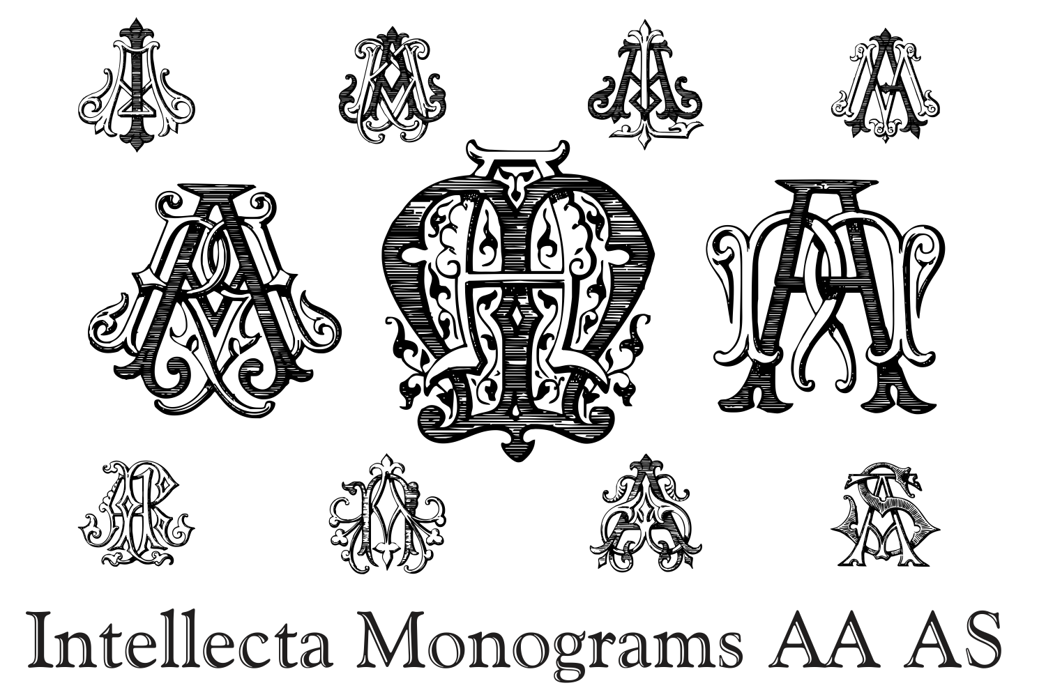 IntellectaMonograms AAAS example image 3