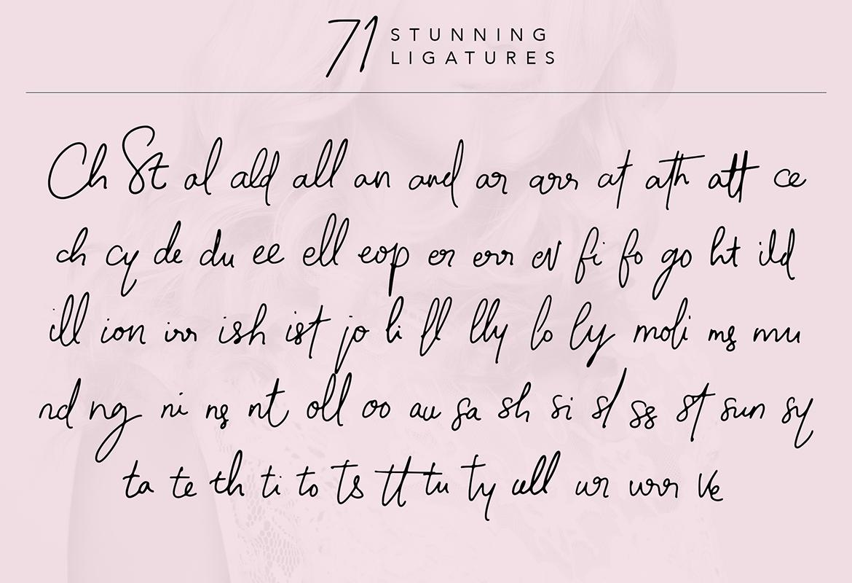 Molita Signature Script Font example image 14