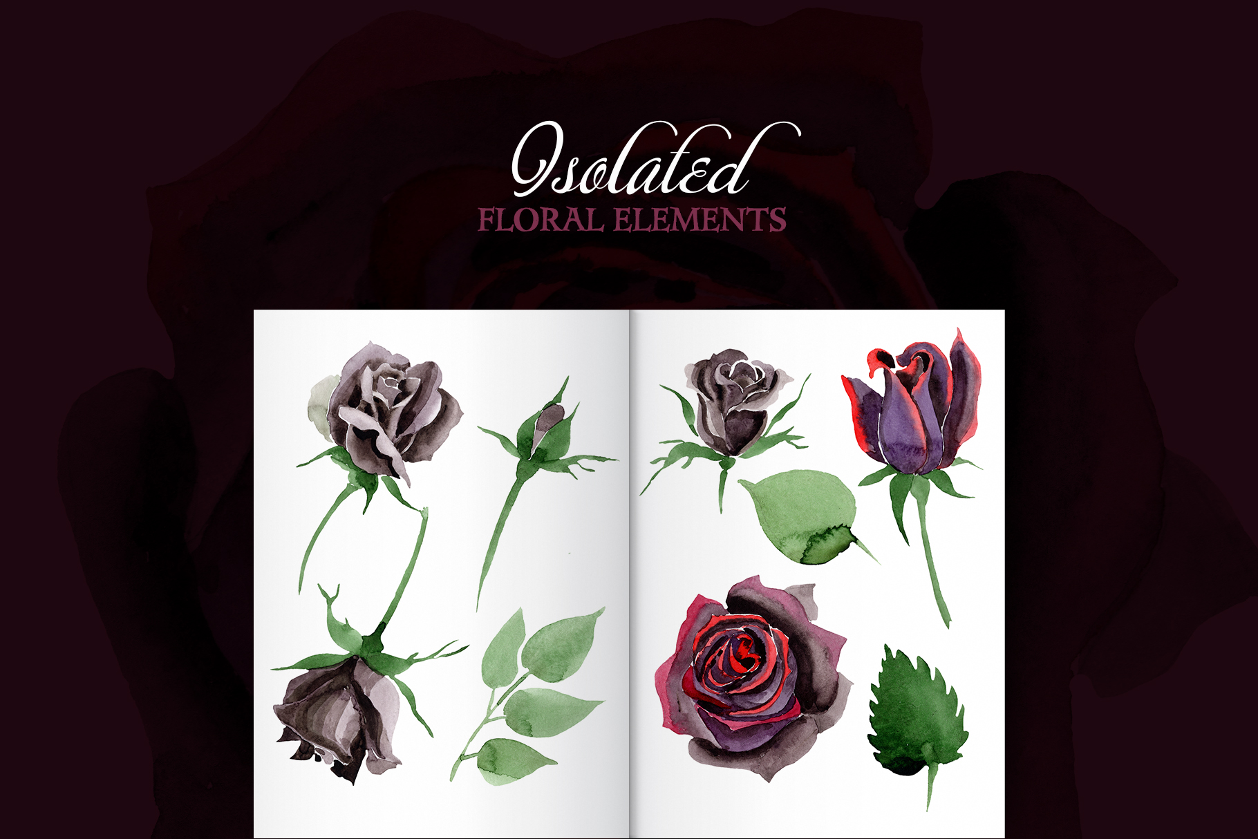 Exclusive black rose watercolor png example image 7