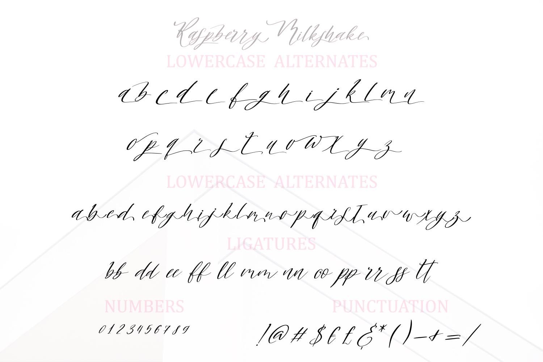 Raspberry Milkshake Script Font example image 8