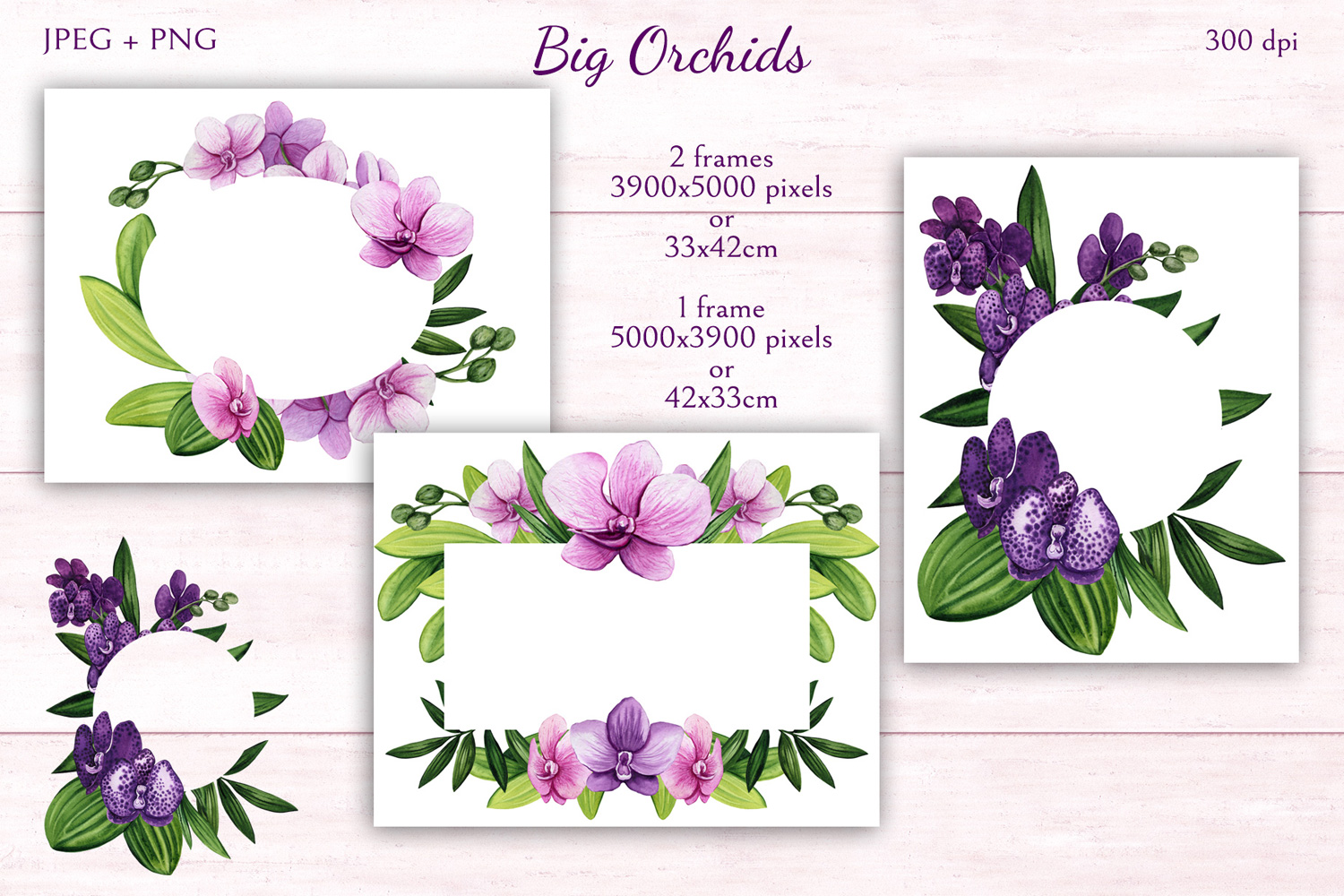 Big Orchids example image 7