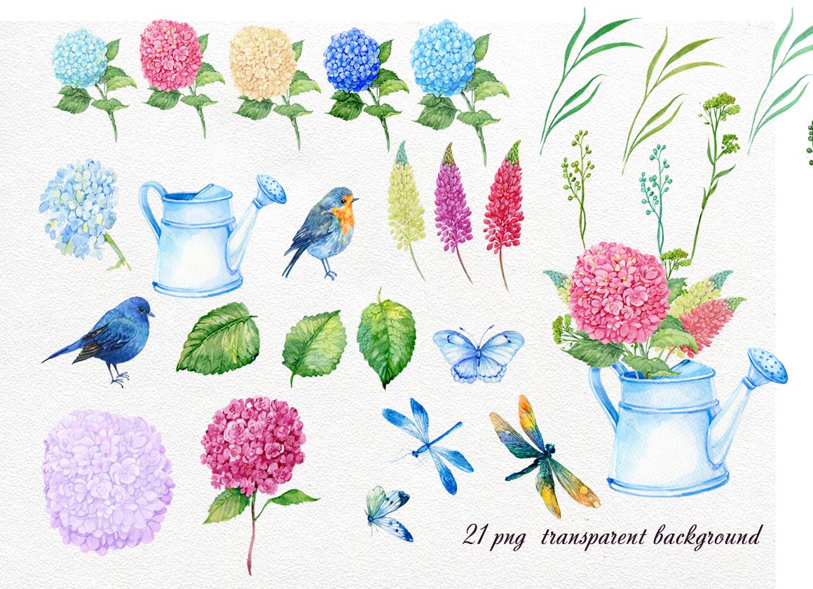 hydrangea watercolor clipart example image 2