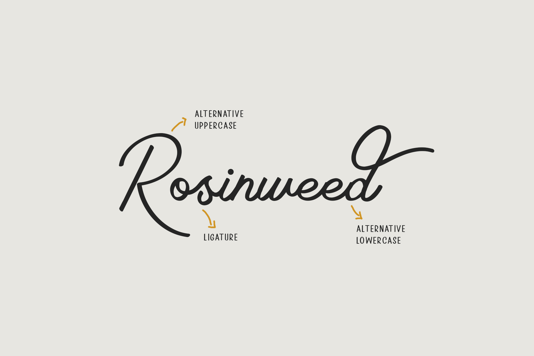 Rosinweed Font duo example image 6