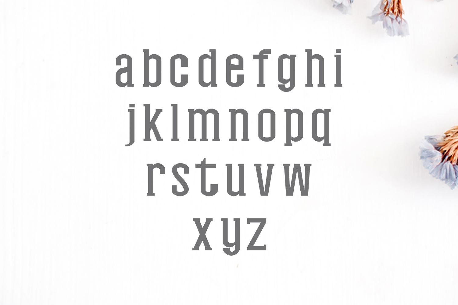 Nasya Slab Serif 4 Font Family Pack example image 2