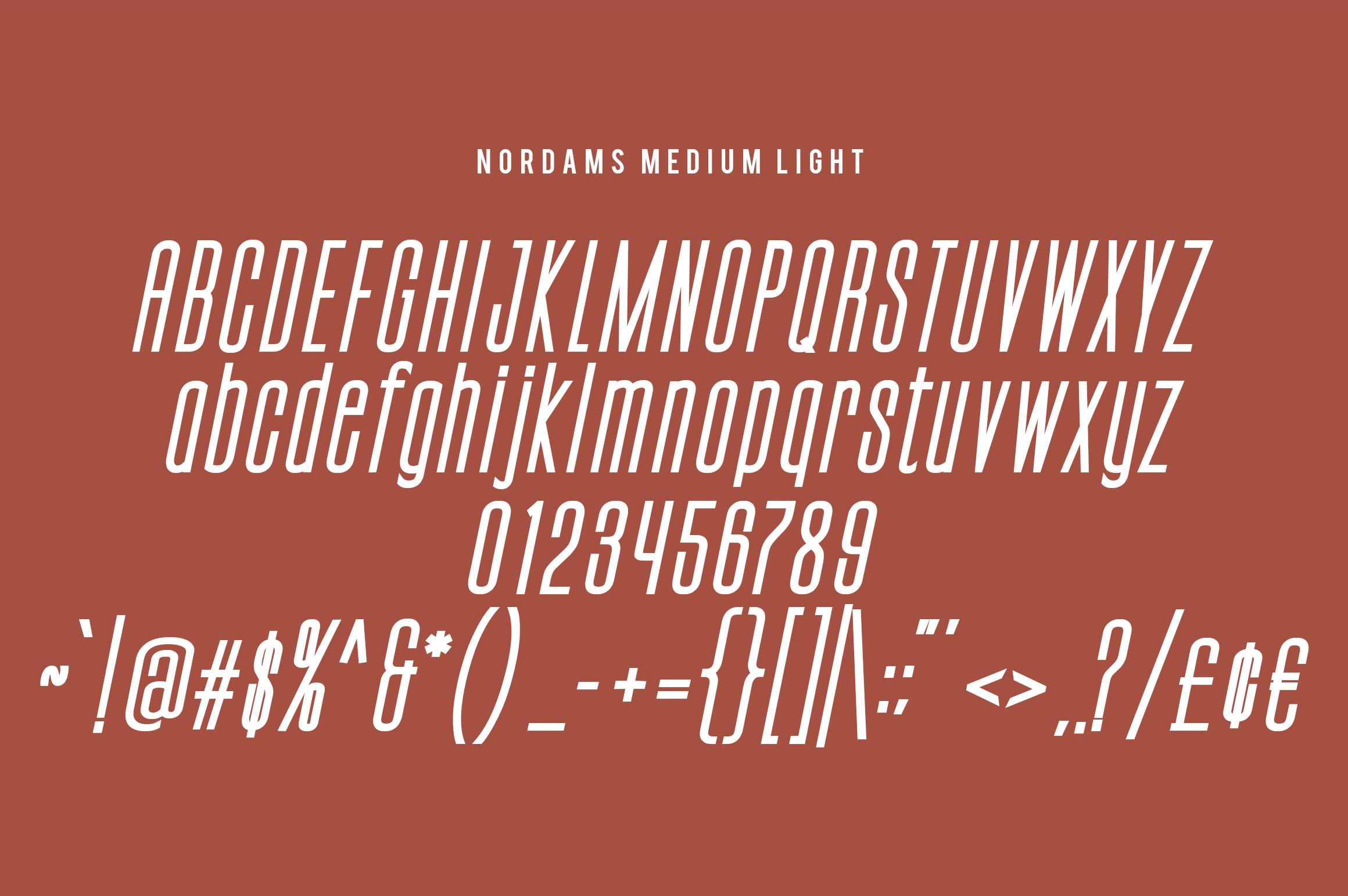 NORDAMS - Sans Serif example image 13