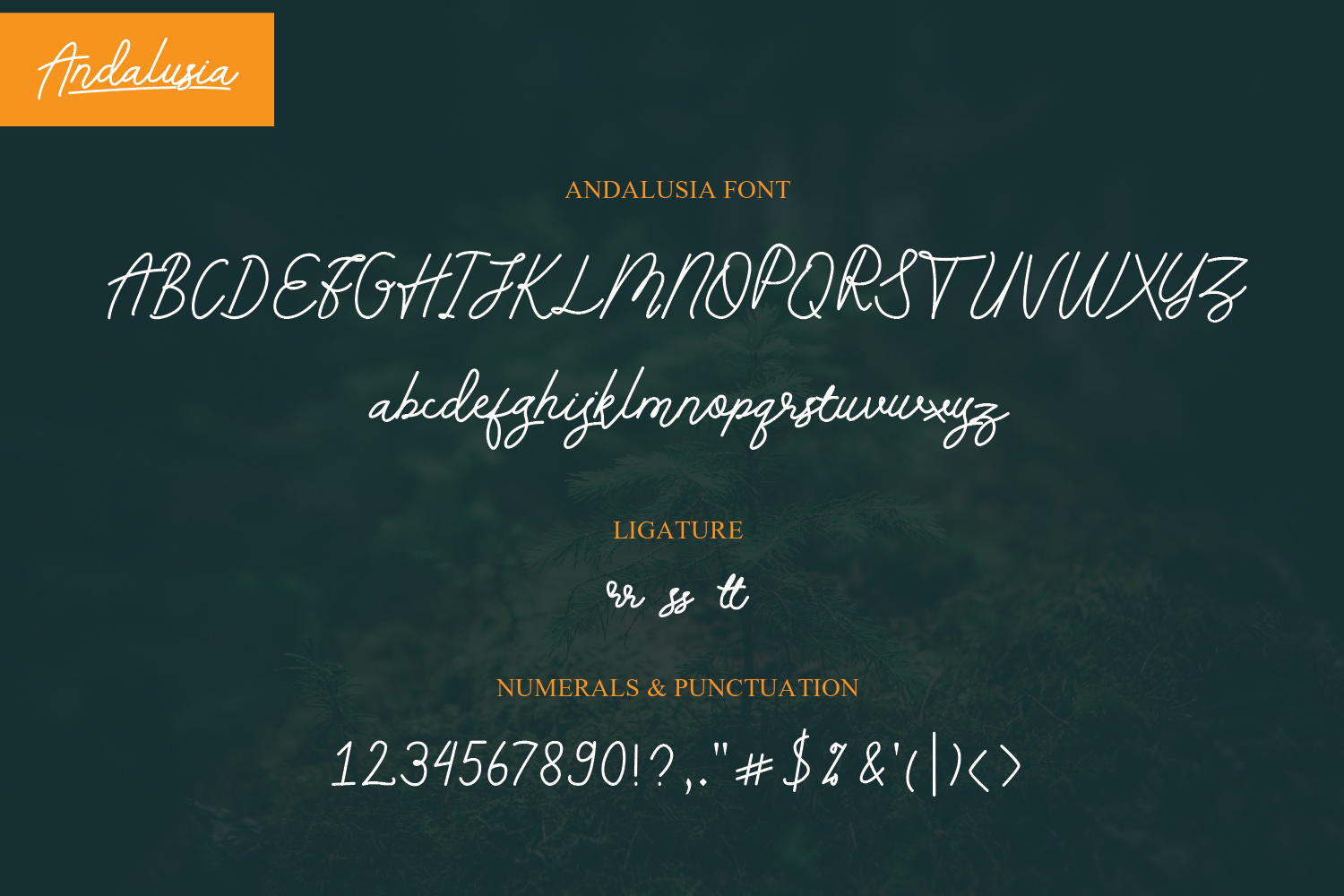 Andalusia -  Handwritten Font example image 7