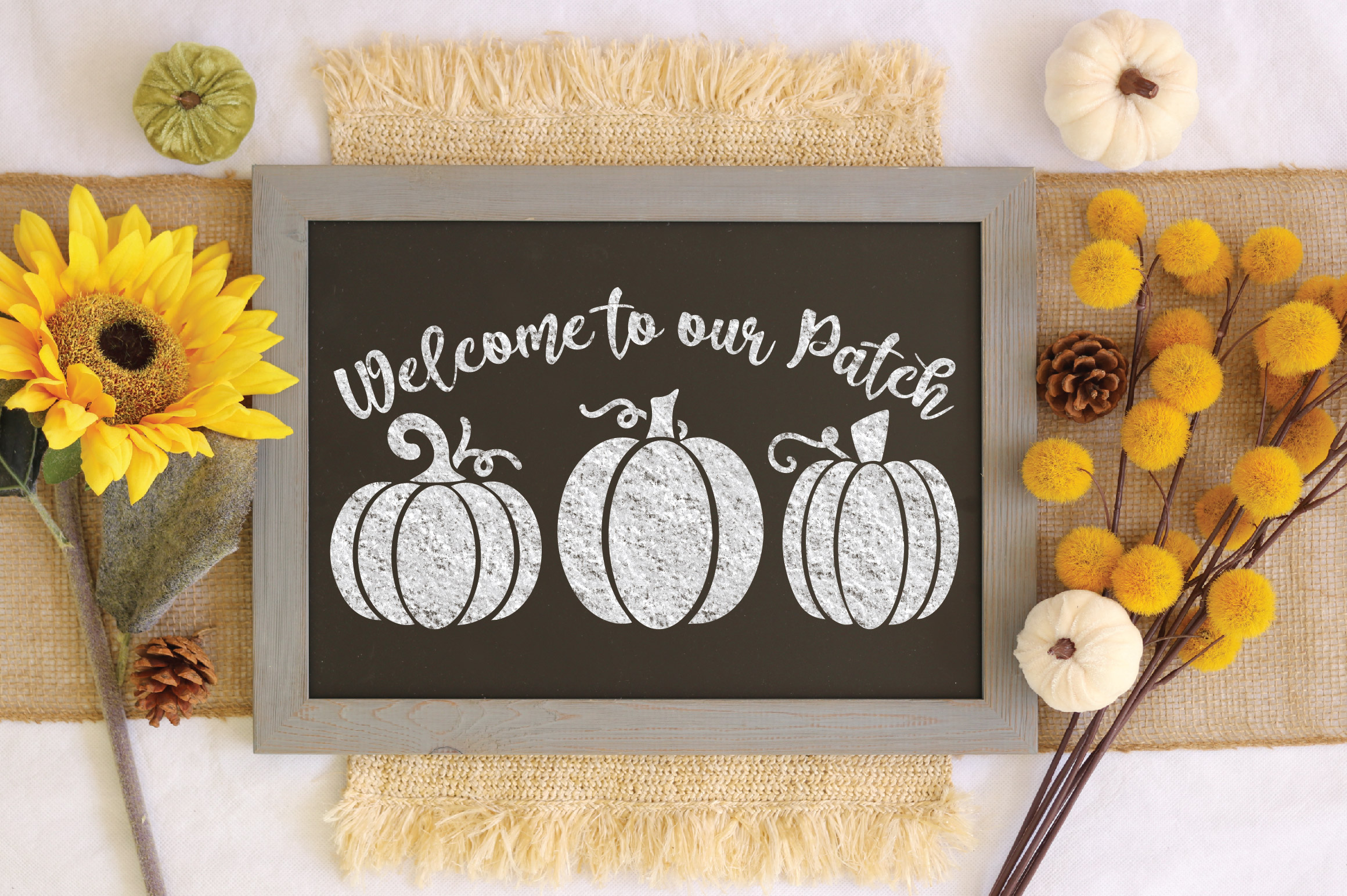 Welcome to our Patch SVG Cut File - Fall Pumpkin SVG example image 3