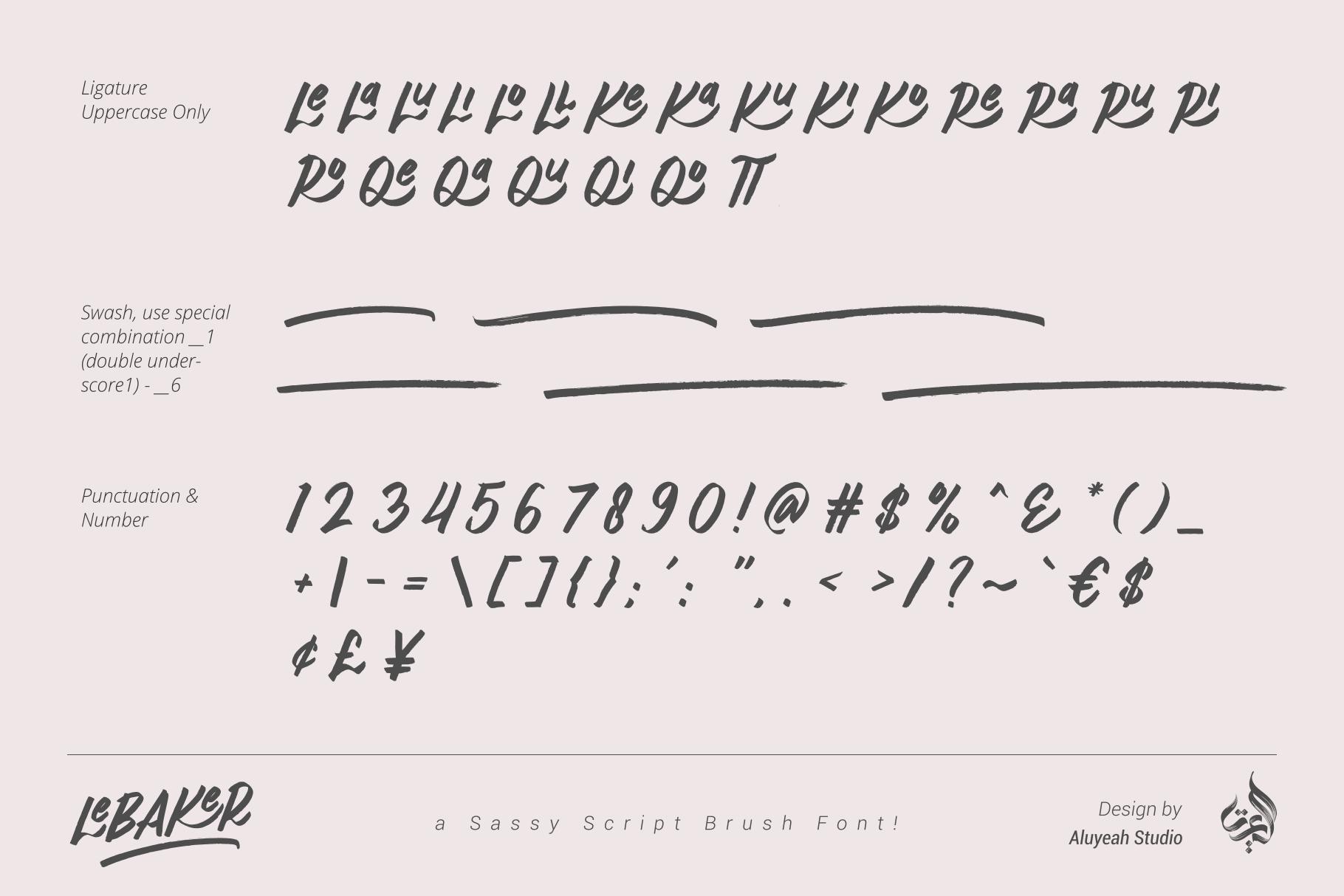 AL Lebaker - Homemade Script Font example image 8