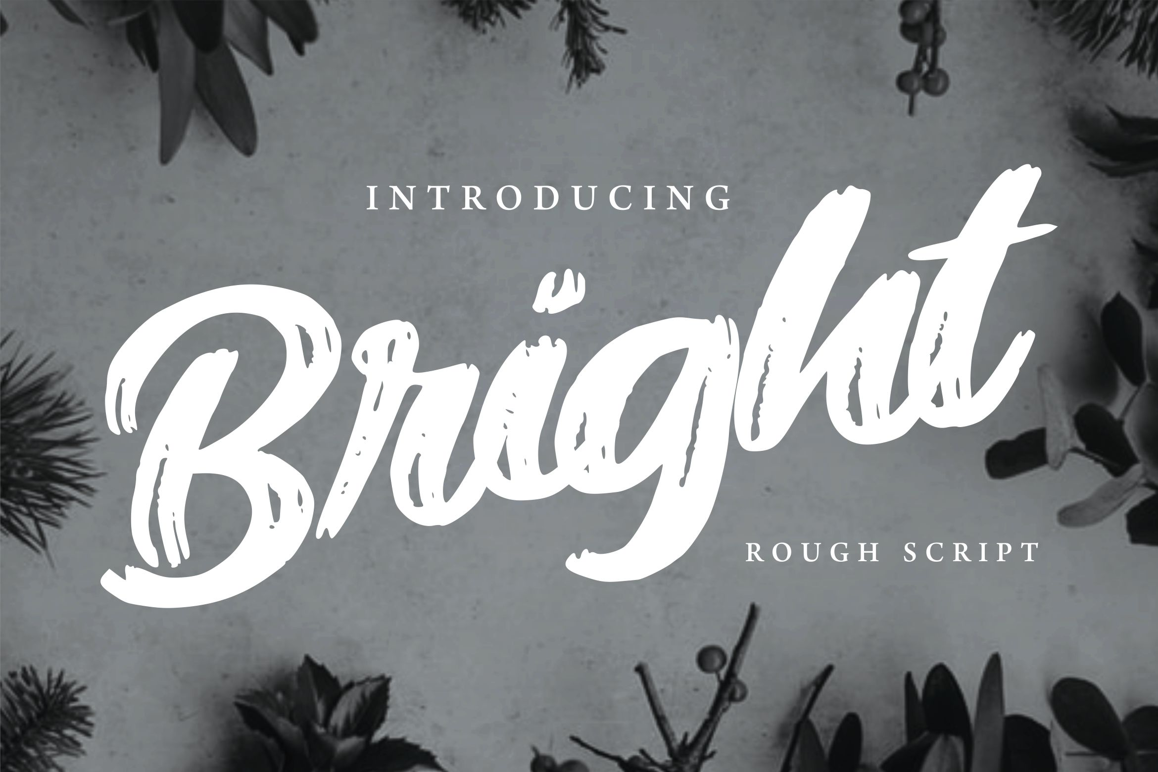 Bright | Modern Rough Script Font example image 1