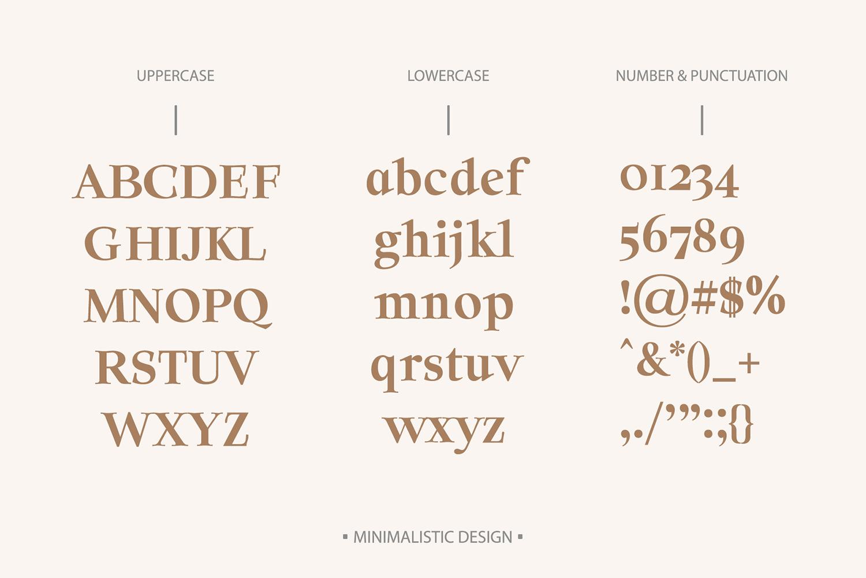 Solomon Serif Font Family example image 2