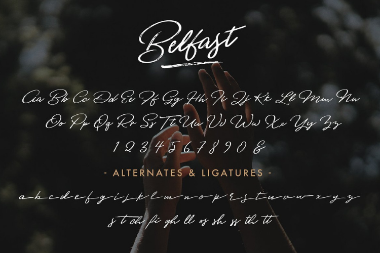 Belfast - A Dry Brush Script example image 2