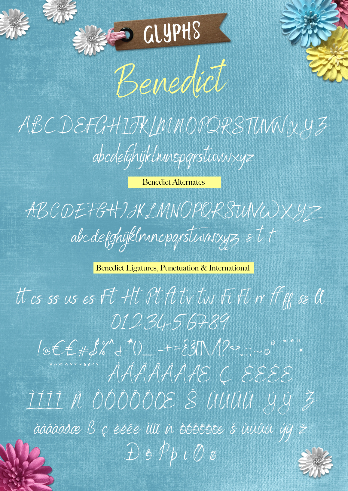 Brush font duo - Hand lettered Script Font pair which can be used for a Cricut design svg font example image 11