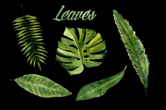 Watercolor Tropic Clip Art example image 2