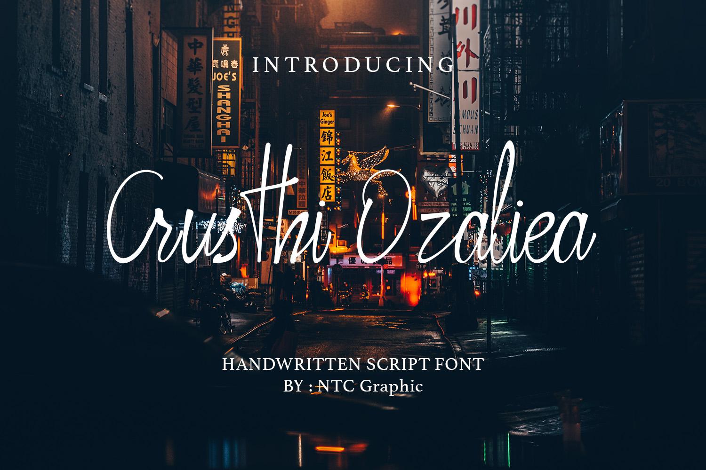 Crusthi Ozaliea Handwritten Script Font example image 1