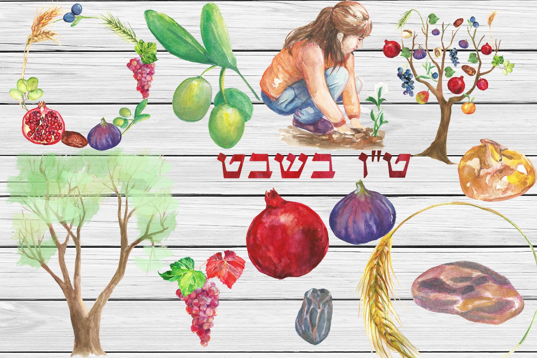 Watercolor Tu Bishvat digital clip art example image 2