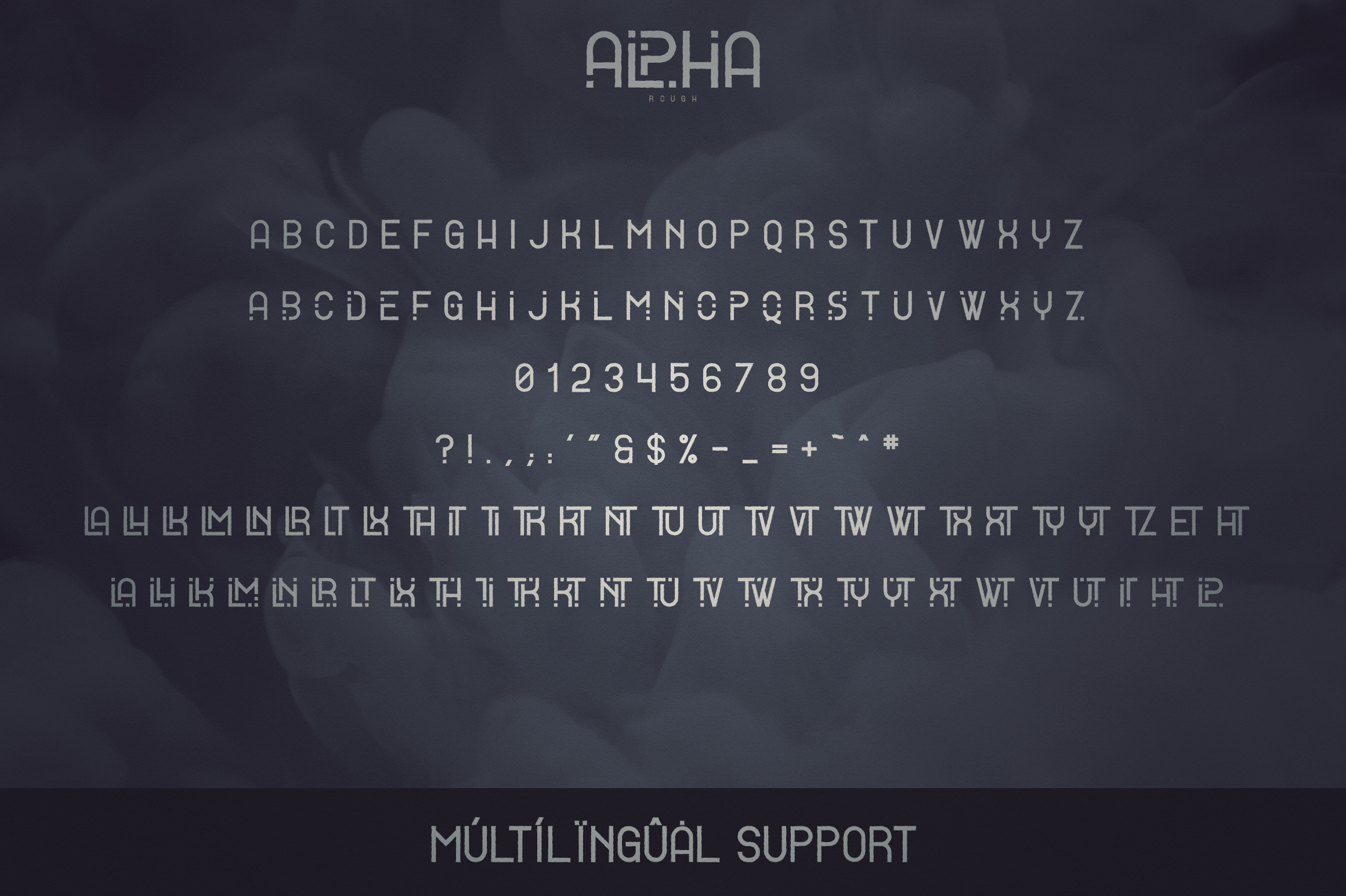 Alpha Display Font - 4 styles example image 11