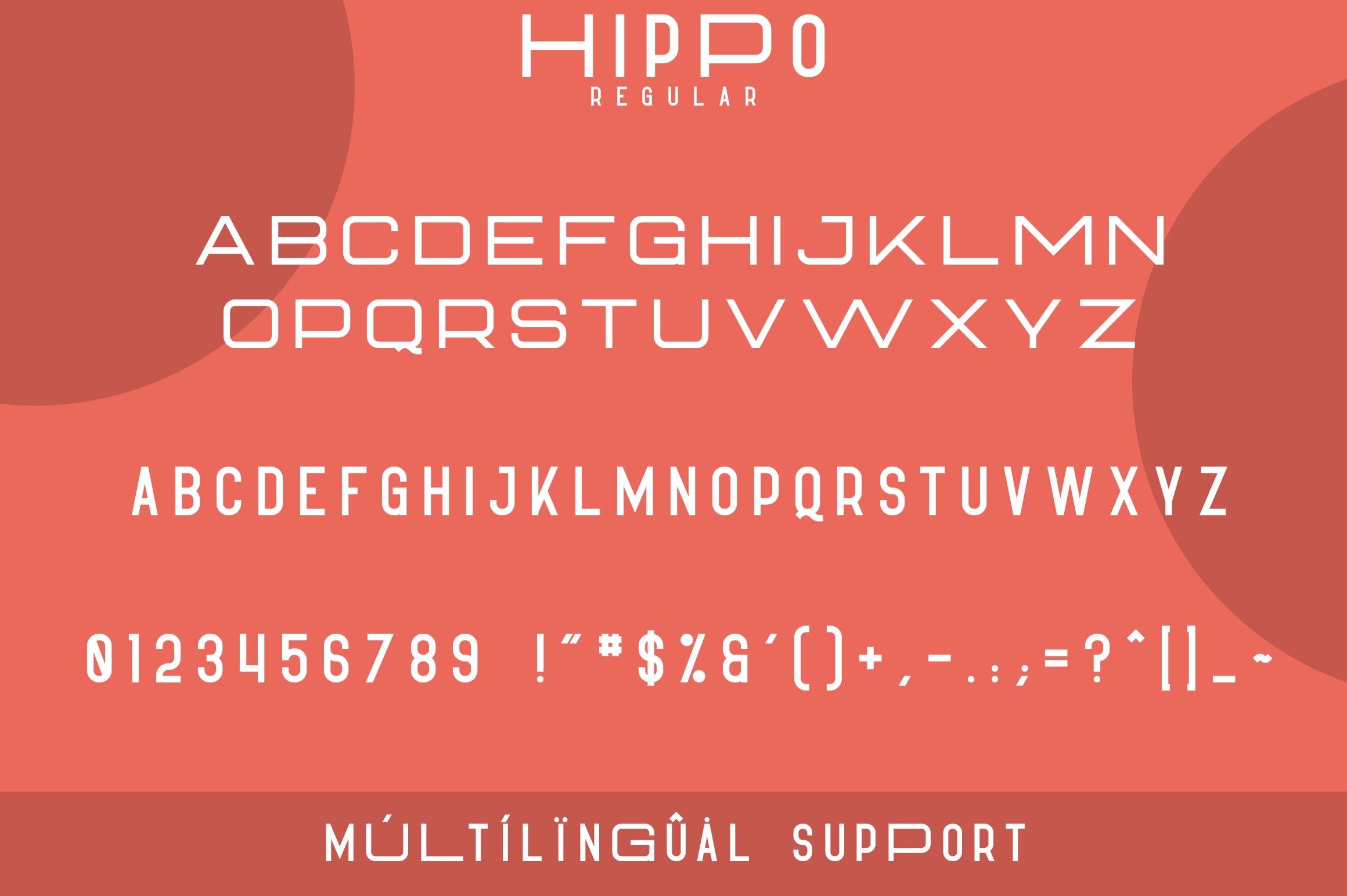 Hippo Sans Serif | 3 styles example image 7