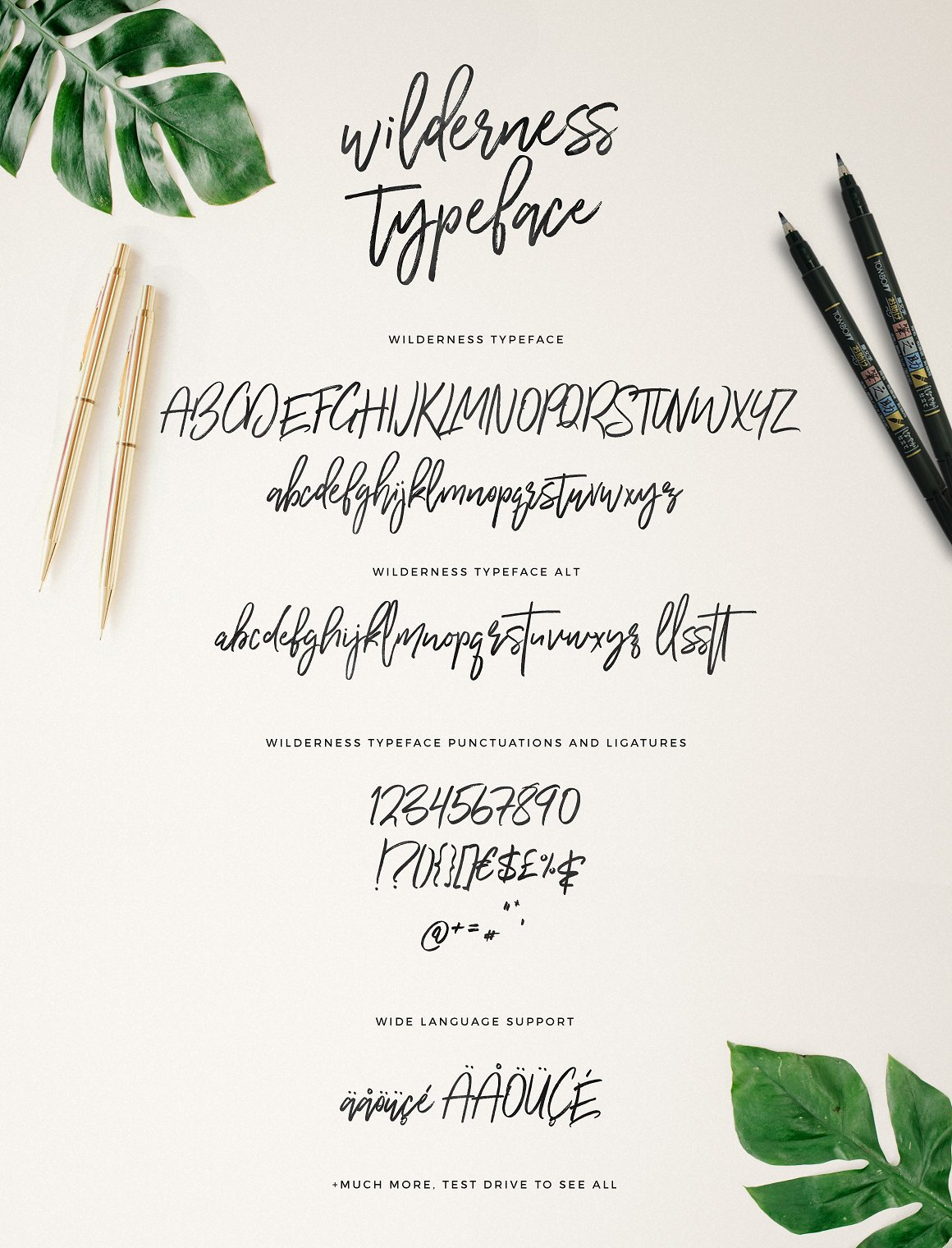 Wilderness Typeface example image 9