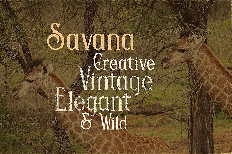 Savana - Display Font example image 2