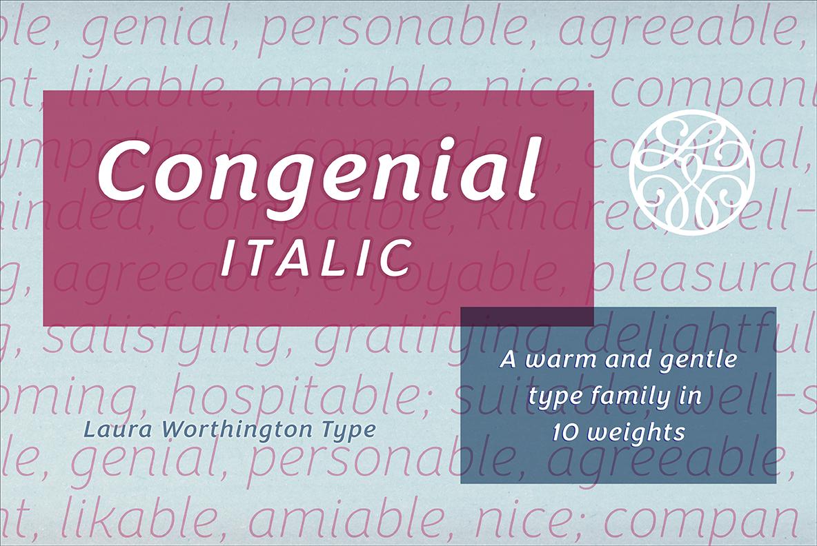 Congenial Italic Family example image 9