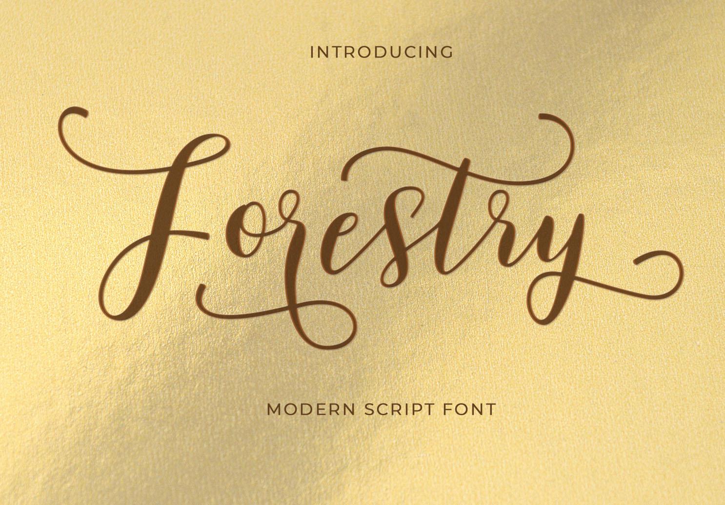 Modern Script Font Bundle example image 7