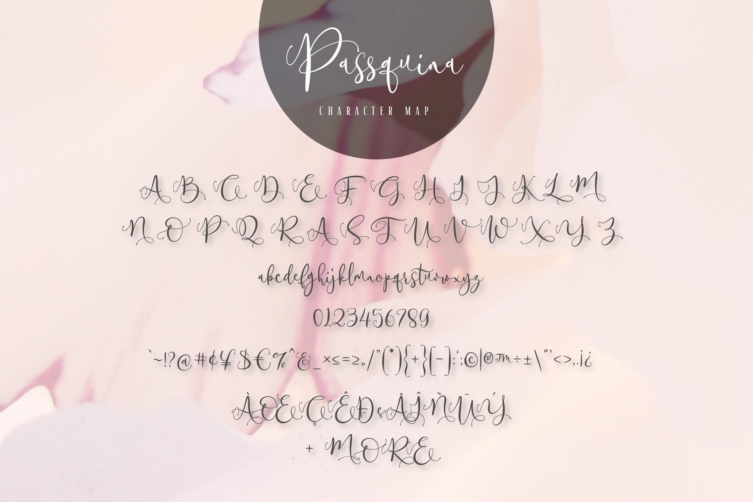 Passquina - A lovely Script Font example image 12