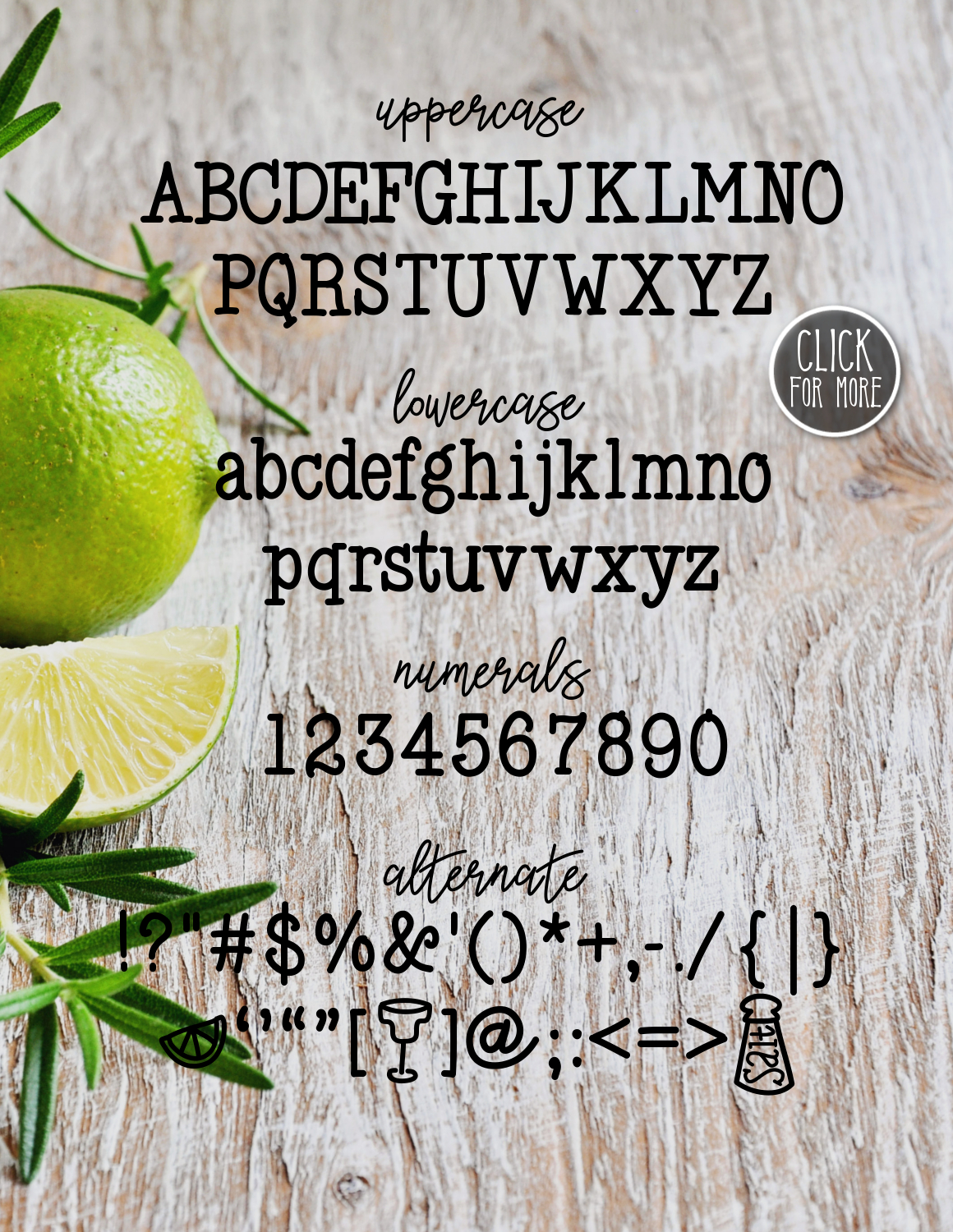 Salt & Lime a Refreshing Font example image 2
