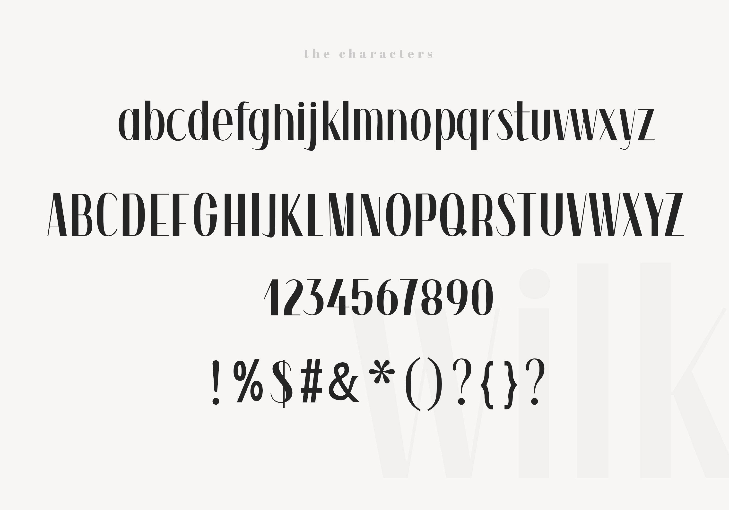 Wilk - A Classy Sans Serif Font example image 11